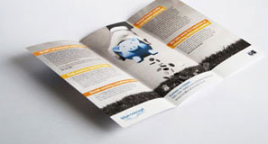 Colourful thick printed leaflets